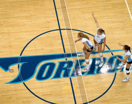 University-of-San-Diego-Toreros-VolleyballSan-Diego,-CA