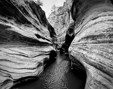 Slot-Canyon-Zion,-UT