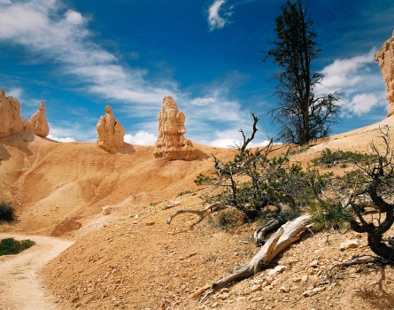 Hiking-in-Hoodoos-Bryce-Canyon,-UT