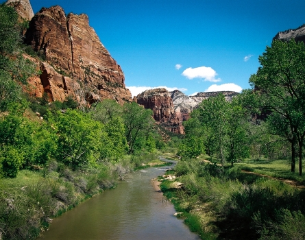 Virgin-River-Zion,-Utah